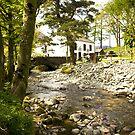 A bridge near Lake Buttermere, Lake District, UK by Elana Bailey