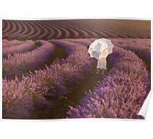 Lavender playground Poster