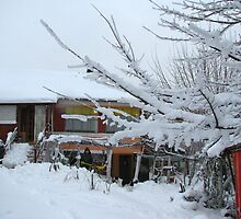 Our First snow of the Winter - Barda, Romania by Dennis Melling