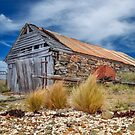 Boat Shed at Oyster Bay by John Conway
