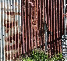 Rusted barn wall by Fran Woods