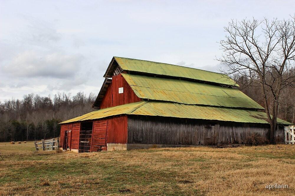 Tucker Family Farm Est 1846 near Linden, Tennessee, USA by aprilann