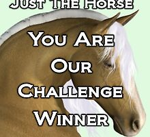 Just the Horse .. Challenge winner by LoneAngel