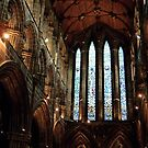 Glasgow Cathedral by Stuart  Fellowes
