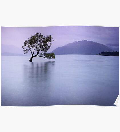 The Tree in the Lake Poster