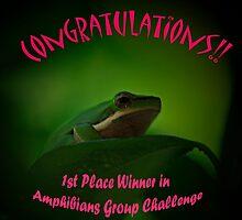 Amphibians Avatar Challenge by Sea-Change