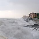 storm in Nervi  by oreundici