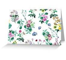 Roses, Moth Orchids, Lilies - Green Pink Blue  Greeting Card