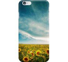 Sunflower Skies iPhone Case/Skin