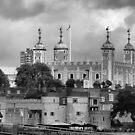 Tower of London by Lynn Bolt
