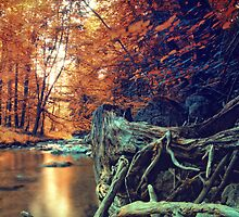 Autumn River by AleksGermanski