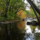 Big Creek - Ashland Oregon by David Clark