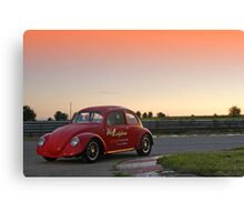 Beetle # 9 Canvas Print