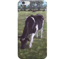 Cow in field at Throop,UK iPhone Case/Skin