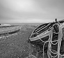 Old Fishing Boat by Robert Lacy