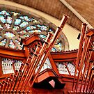 Organ Pipes by debidabble