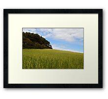 True The Landscape Framed Print