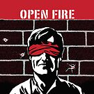 Open Fire by Terry Fitzgibbon