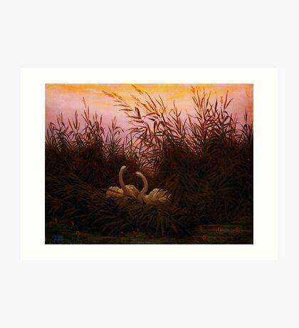 Caspar David Friedrich Schwäne im Schilf beim ersten Morgenrot Art Print