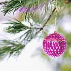Christmas ornament on a snowy pine tree branch by campyphotos