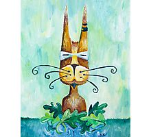 Roofus Whiskers Photographic Print