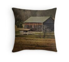 So many barns, so little time Throw Pillow