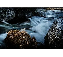 Living Water Photographic Print