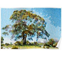 Awesome gum tree Poster
