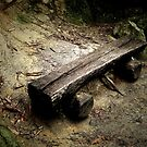 Bench on a Mountain by Roger Sampson