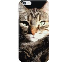Kitty Cat Phone iPhone Case/Skin