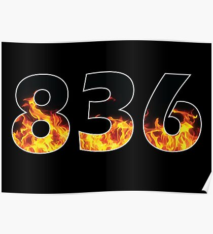 836 Poster
