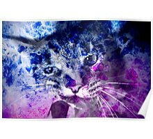 Galaxy Abstract NOW With Kitty Included! Poster