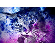 Galaxy Abstract NOW With Kitty Included! Photographic Print