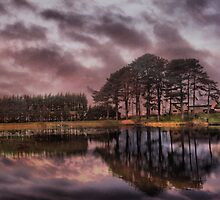 Dusk at  Pendle Veiw  by Irene  Burdell