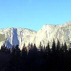 Yosemite National Park by Travel-Hop