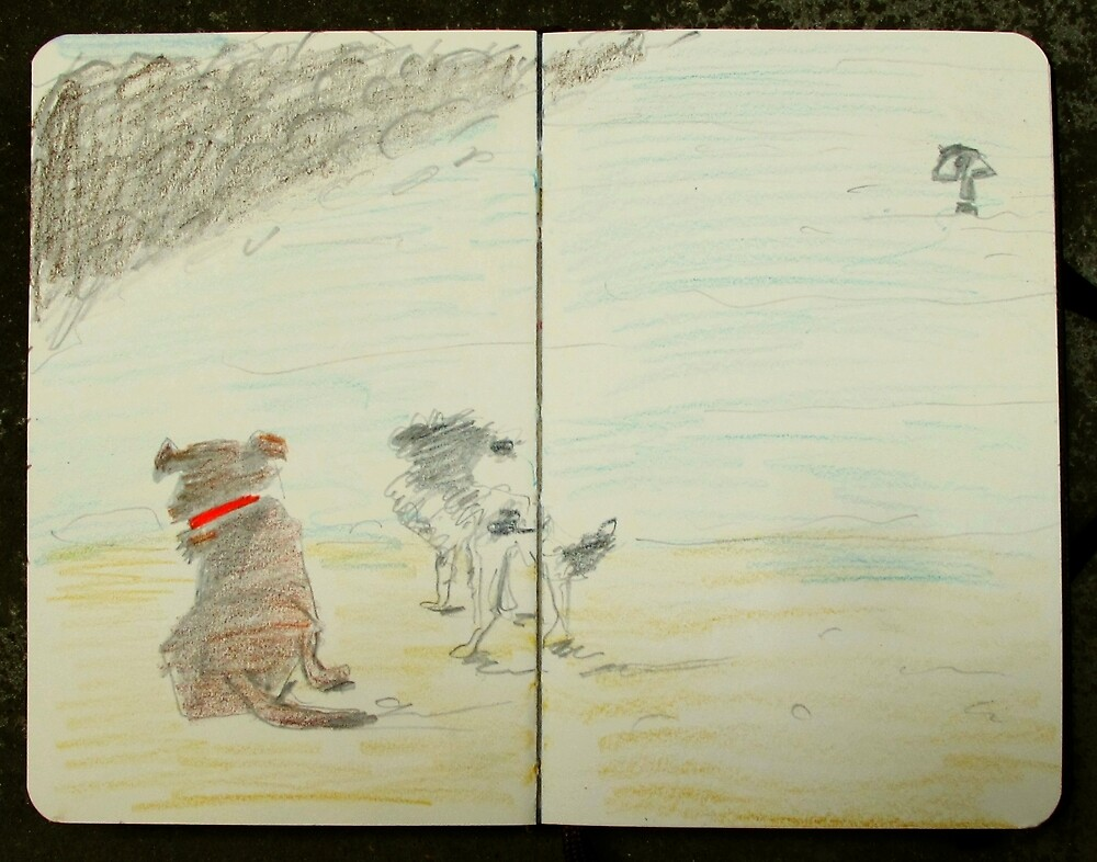 dogs and surfer by donnamalone