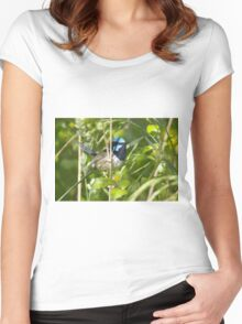 Little blue wern Women's Fitted Scoop T-Shirt