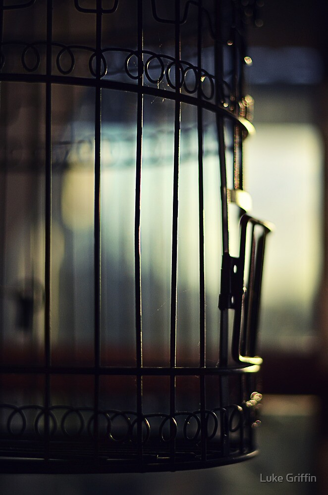 Caged by Luke Griffin