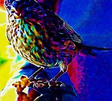 Neon Bird by BikerChic