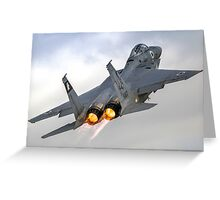 Israeli Air force (IAF) Fighter jet F-15 (BAZ) in flight Greeting Card