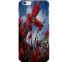 Red Pohutukawa Tree Flowers iPhone Case/Skin