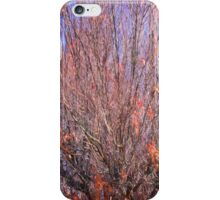 Orange And Blue Autumn iPhone Case/Skin