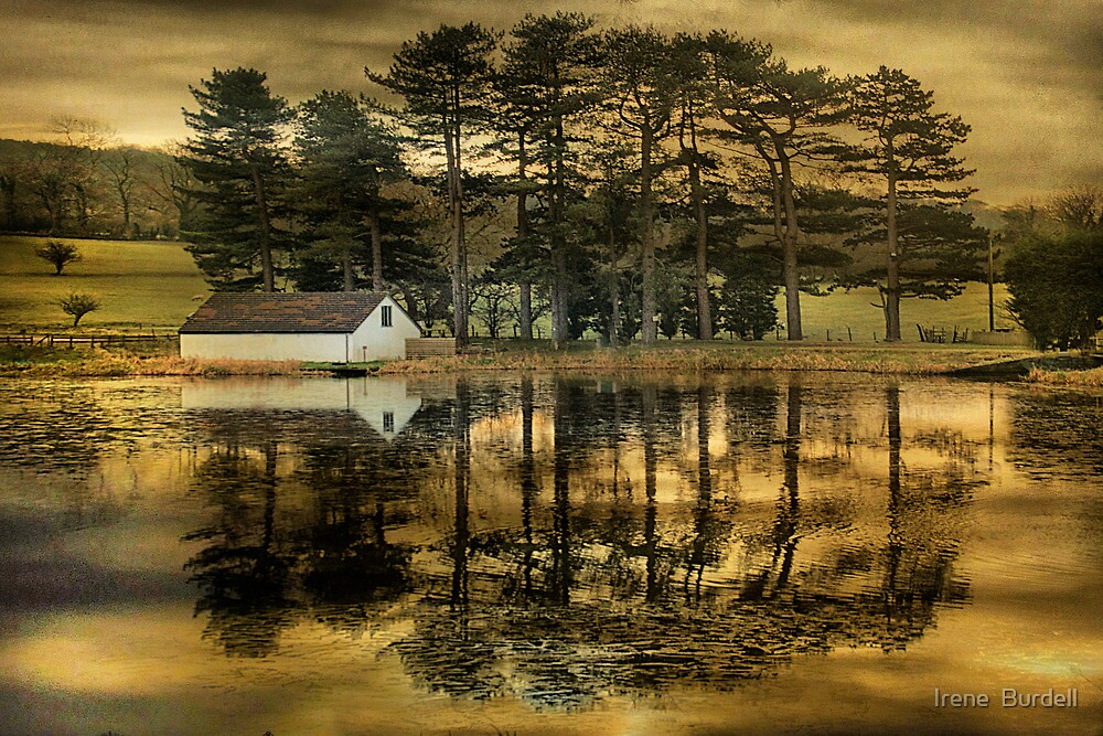 On Golden Pond. by Irene  Burdell