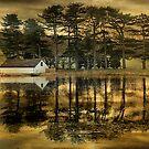 On Golden Pond. by Irene  Burdell