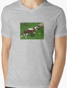 Cute Brown and White Lamb with Ewe Mens V-Neck T-Shirt