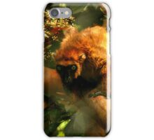 Madagascar Lemur iPhone Case/Skin