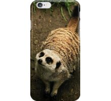 Meerkat On Alert iPhone Case/Skin