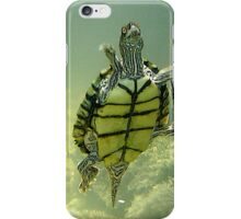 Turtle Time iPhone Case/Skin