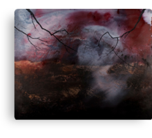 A cold glitter of souls Canvas Print