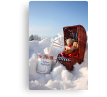 Winter Pleasures With Best Friends Canvas Print